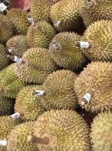 Durian #aintgonnaeatityet #stinkstohighheaven